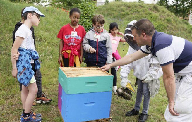 Des élèves de CM2 en classe éco-citoyenne apprennent les secrets de l'apiculture grâce aux ruches situées au Fort de Charenton.