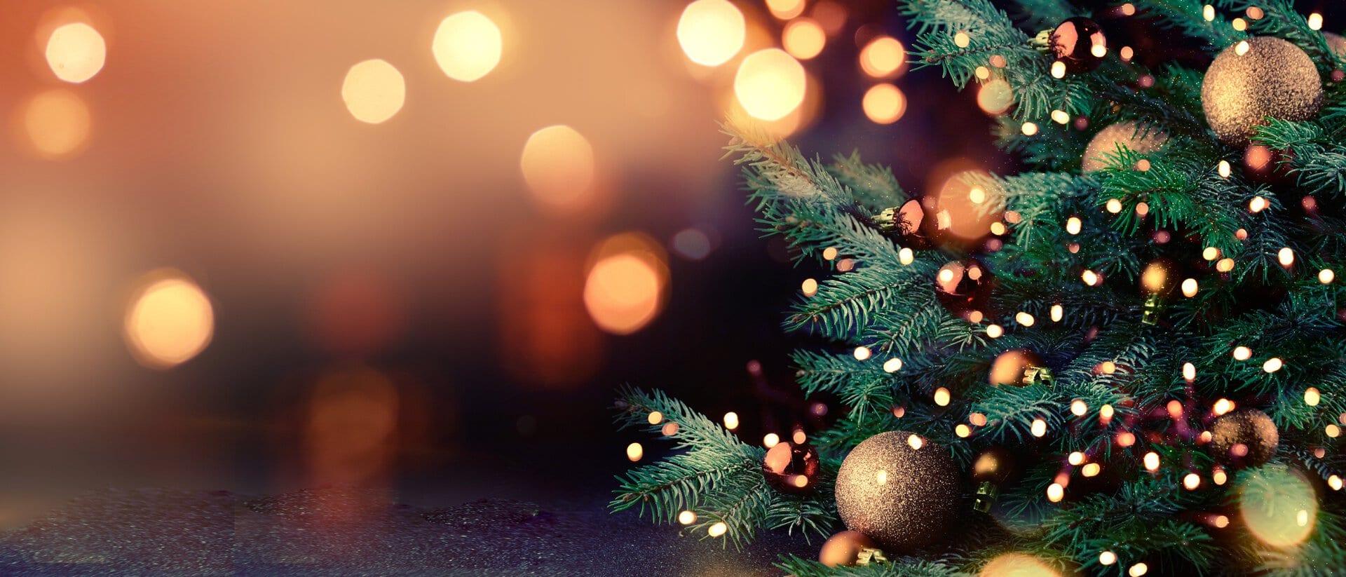 Que faire de mon sapin de Noël ?