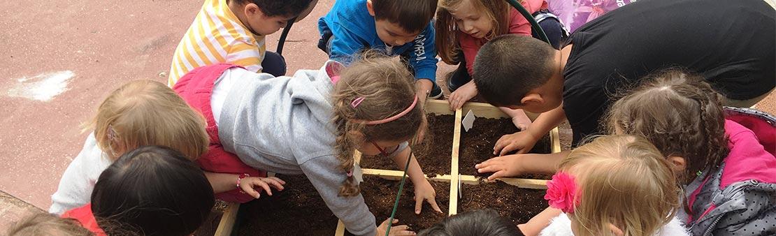 Écologie : les écoles maisonnaises se mettent au vert