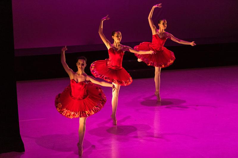 Gala de danse du Conservatoire
